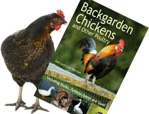 Backgarden Chickens Poultry Book